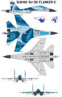 Sukhoi Su-30 Flanker-C by bagera3005