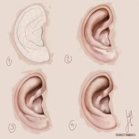 how I paint ears by YourCottonmouth