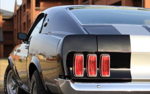 Mustang Tail by joerayphoto
