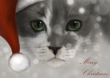 merry christmas 2013 by Trutze