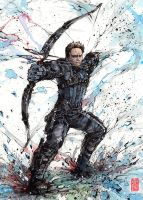 Hawkeye in action Watercolor and Sumi ink by MyCKs