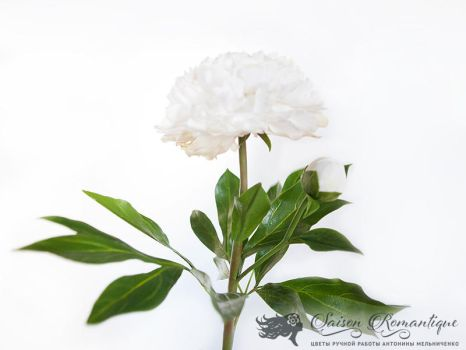 White Peony - Polymer Clay Flowers by SaisonRomantique