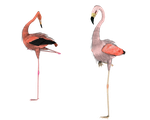 standing around pink flamingos by madetobeunique