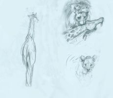 Animal Life Drawing #1 by ovaettr