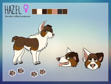 .: Hazel 2016 ref :. by Shady-Paws