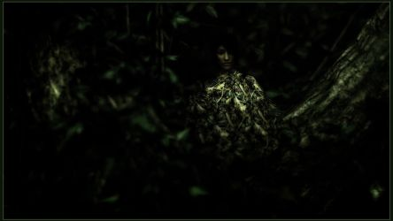 Wild Woods 22/x by LmAnt