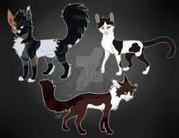 .: Fullbody Cats by SnexMy