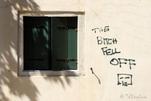 The Bitch Fell Off by Talkingdrum