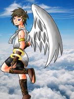 Pit in the sky by Zelina56