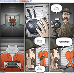 The Adventures of Regular Cat - Processing by tomfonder