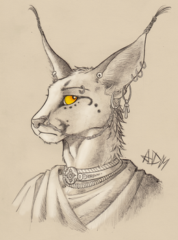 ''Daily'' sketch - Caracal Noblewoman.  (updated) by 0laffson