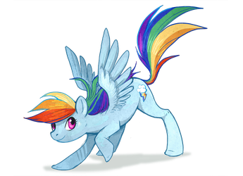 Rainbow Dash by Flying-Fox