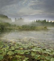 RESTRICTED - The Pond Premade Background by frozenstocks
