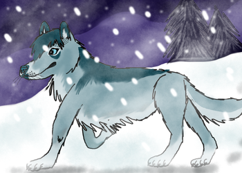 Blue Night by Winter-Alpha-Wolf