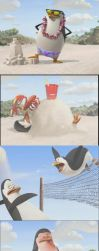 penguins holiday by levitha