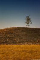 Behind The Hill by Sigurd-Quast