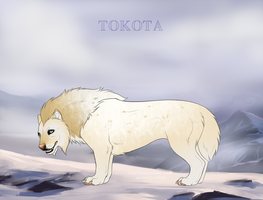 Coyote 29522 by TotemSpirit