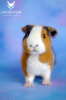 needle felted guinea pig pet portrait by SaniAmaniCrafts