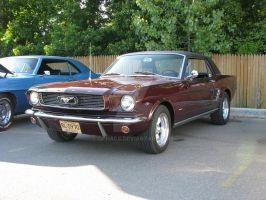 1966 Ford Mustang 289 by Qphacs