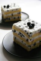 Blueberry And Yogurt Torte by neongeisha