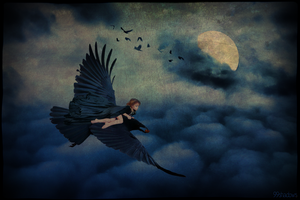 She Dreamed She Could Fly 2 by 99shadows