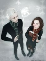 HP: Dramione - Ice Sculpture by LittleChmura