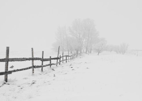 Winter landscapes 2 by Tumana-stock