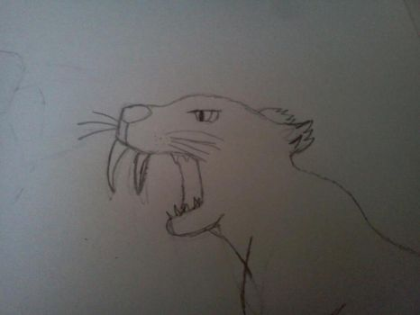 I drew this saber-tooth tiger :D by AngelDemonLOLZ