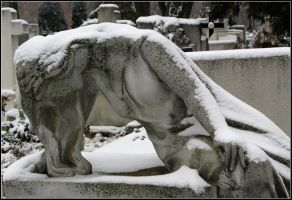 Winter Mourner by AgiVega