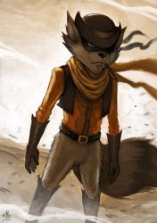 Go West Young Raccoon by Ry-Spirit