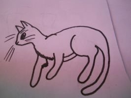 Cat Drawing by Busted-Love