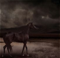 The Unforgiven. by the-end-studios