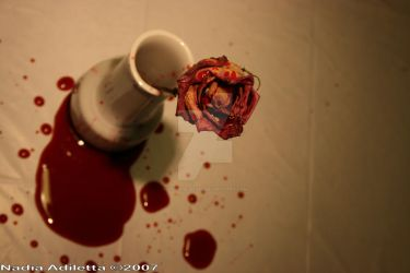 Bleeding Rose by Yellow-Shoes