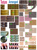 Textures For Dragon by ArnaTornwolf