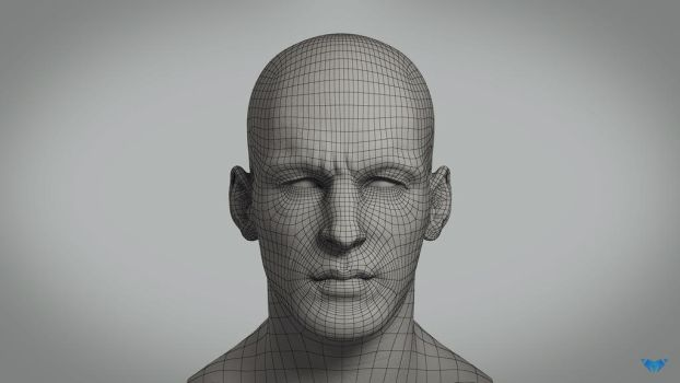 Navigator Head Wireframe by Marcelo-Pinheiro