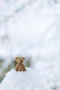 a lonely bear by leAlmighty