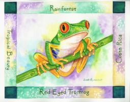Red-eyed Tree Frog by EmeraldIsleElf