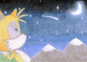 Tails watching the Night Sky by StefanTheHedgehog