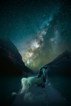 all the stars by despoire