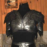 elven leather armor by Lagueuse