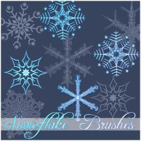 Snowflake Brushes by Atenaispd