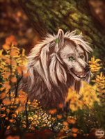 First Day of Autumn by Enaxn