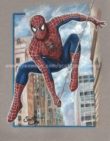 Spiderman by scotty309