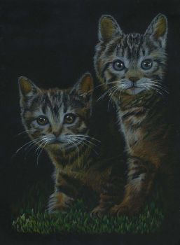 Kittens by mojunheem