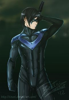 Nightwing by Tinani