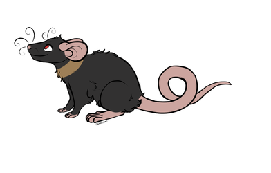 StarlingsNest's Ratty 387 by Pitter-Paws-Rattery