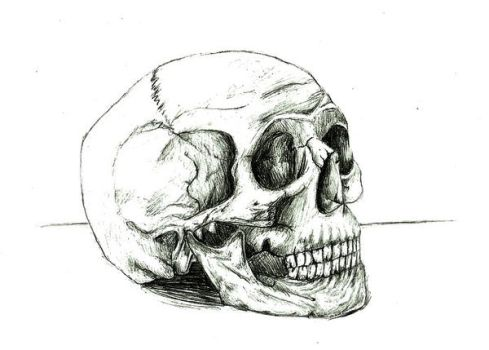 Skull by hanyasys