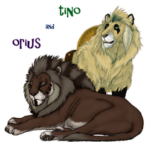 Tino And Orius by TinaLeRawr