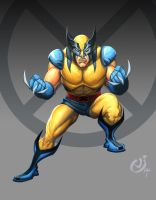 Wolverine by NicChapuis