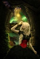 Captive in the castle by Lady-Vilna